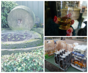 Westons Cider Tour