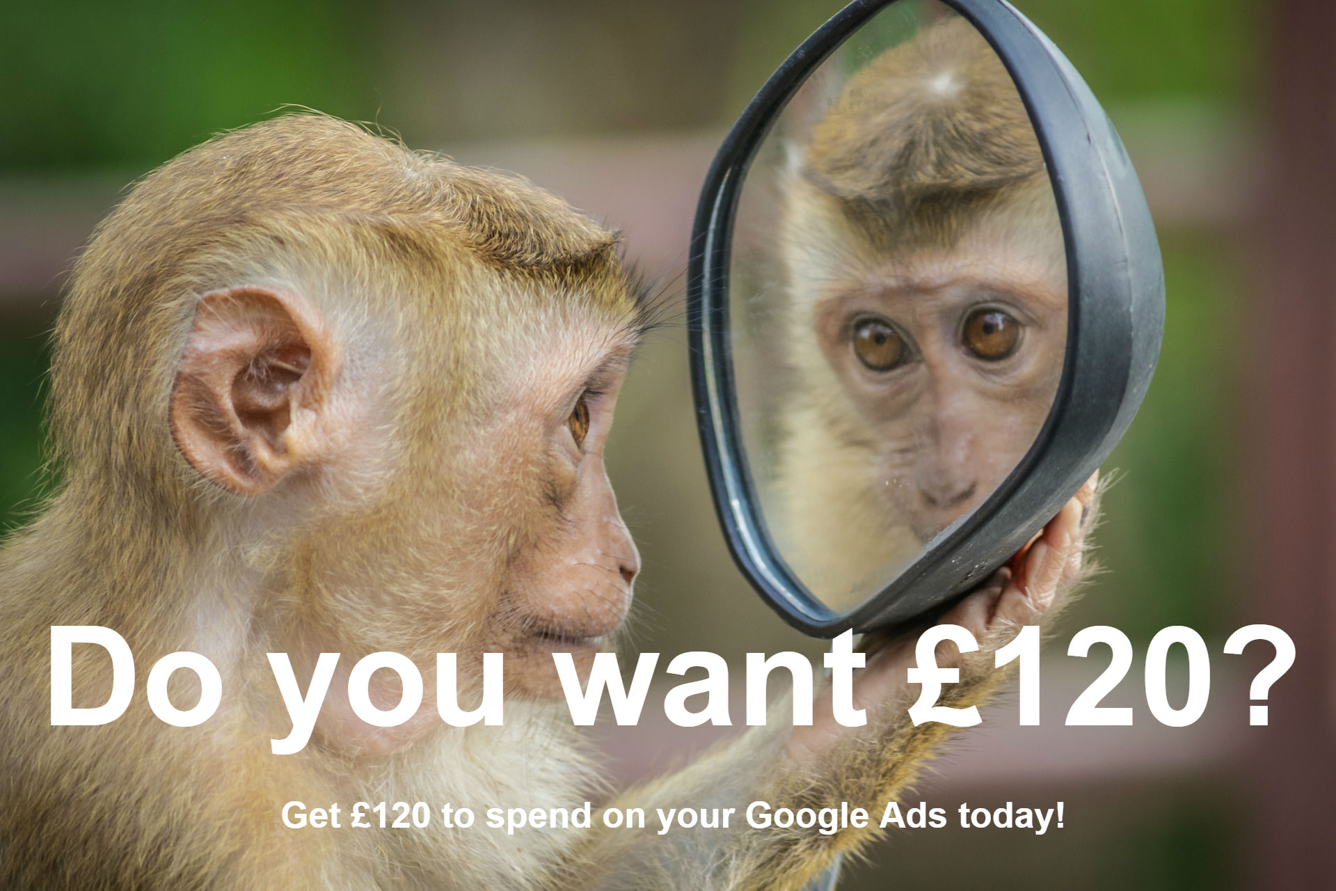 Would You Like Upto £120 Advertising For FREE?