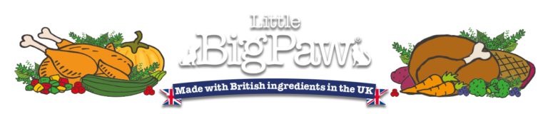 Client Highlight | Little Big Paw