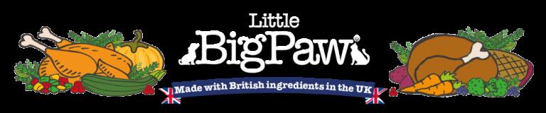 Client Highlight | Little Big Paw